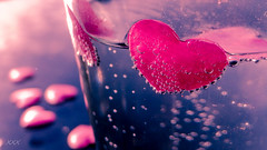 Love potion for Macro Monday #bubbles (babs van beieren) Tags: pink love water heart bubbles sparkle lovepotion macromonday
