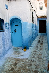 IMG_3700 (rachel_salay) Tags: city blue morocco chefchaouen