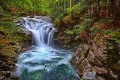 Stream waterfall (enzo rettori) Tags: waterfall stream creek water abetone tuscany sestaione