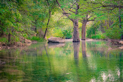 Wimberley_0018 (allen ramlow) Tags: trees reflection green nature water creek landscape reflecting pond texas sony hdr wimberley a6000