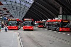 Red colors of the R-NET (Don Maskerade) Tags: road bus public buses amsterdam outdoor transport transportation vehicle centraalstation autobus stad scania centraal ov koepel ebs bussen citaro rnet streekvervoer ijzijde