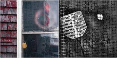 in the window (jd weiss) Tags: diptych tmax100 hasselblad500cm ektar100 120makroplanar