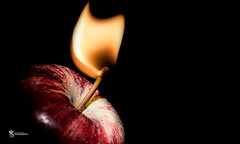 To the core. (Simon Rich Photography) Tags: lighting camera macro apple fruit canon fire flash off flame tamron core adaption snoot simonrich mrmonts simonrichphotography