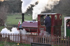 DSC_5513 (Hampton & Kempton Waterworks Railway.) Tags: devon 2014 santaspecial darent