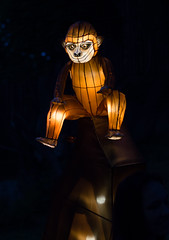 _DSC9538_2 (Elii D.) Tags: light fish flower animal night zoo monkey neon dragons lantern lampion dargon