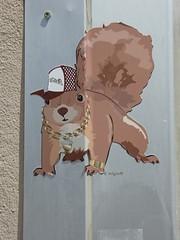 Graff in Grenoble (brigraff) Tags: streetart pasteup pastedpaper collage grenoble squirrel sticker esquilo eichrnchen ardilla papiercoll cureil wheatpast tramb brigraff