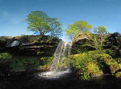 Fairlie Moor Waterfall 2 (14) (g crawford) Tags: waterfall crawford ayrshire northayrshire fairliemoor failiemoor