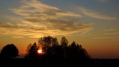 *** (pszcz9) Tags: sunset cloud tree nature landscape sony poland polska a77 zachd przyroda drzewo chmury beautifulearth zachdsoca pejza