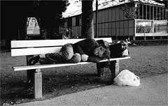 demotivated (la_imagen) Tags: street people blackandwhite bw streetlife bregenz menschen sw bodensee insan sokak lakeconstanze siyahbeyaz lagodeconstanza streetandsituation lagodiconstanza laimagen