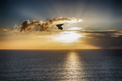 Hang Gliding_0188 (Manni750) Tags: ocean sea sky sun clouds gliding hang