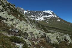 Petit Mountet (bulbocode909) Tags: nature suisse vert bleu neige paysages rochers valais montagnes zinal planpato
