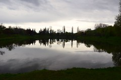 Un temps de grisaille  -  A weather of greyness (Philippe Haumesser Photographies) Tags: trees sky france reflection water forest reflections outside reflex pond nikon eau quiet reflet arbres alsace reflets forests fort elsass 68 tang 2016 hautrhin rouffach forts d7000 nikond7000