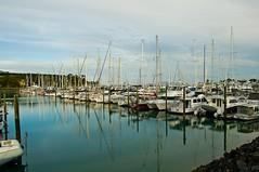 015_6075 as Smart Object-1 (Bernzfotos - Bernard Golder Photography) Tags: newzealand nikon auckland nz northisland nikkor d300 nouvellezlande gulfharbour nikond300 nikkorvr18105mmf35