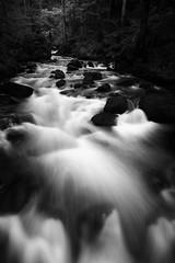 Flow (Florent Chouffot) Tags: longexposure blackandwhite bw nature water monochrome river landscape flow rocks wideangle foveon dp0 sigmadp0quattro dp0quattro