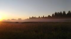 Sunrise (careth@2012) Tags: mist nature misty fog sunrise golden nikon scenery mood view britishcolumbia foggy scenic atmosphere scene serene tranquil atmospheric 55300mm nikond3300 d3300