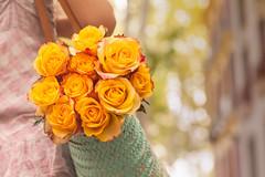 Amarillo en el mercado (Nathalie Le Bris) Tags: flower fleur rose yellow jaune basket market bokeh flor rosa amarillo mercado march tesoro cesta panier lvm cret