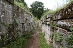 Necropoli di Orvieto_14