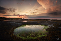 The heart of Bamburgh (Steve Clasper) Tags: uk lighthouse beach coast north northumberland coastal northern bamburgh rockpool steveclasper