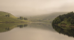 Gentle (manphibian) Tags: trees summer england mist water misty fog reflections manchester sony foggy sigma reservoir rochdale 24105 greenbooth sonya7
