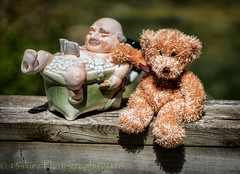 I'm Huntley (HTBT) (13skies) Tags: bear travel family friends love shopping outside trapped sitting time creepy teddybear ugly teapot adopt huntley htbt happyteddybeartuesday fatmaninatub trappedtogether