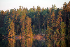 IMG_0410 (www.ilkkajukarainen.fi) Tags: juhannus kes midsummer kallio rock uusimaa suomi finland europa eu sun aurinko holiday iltaaurinko ilta evening happy life forest mets three threes