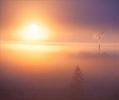 Surreal morning (ezhikoff) Tags: morning sunrise fog