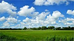 Heiteln - Homeland #42 (Hindrik S) Tags: heiteln homeland frysln friesland nederland netherlands sky clouds bluesky blue scape landscape landschap lnskip green grien groen greide weide greidln weiland pasture meadow panorama sonyphotographing sony sonyalpha a57 57 slta57 outdoor tamron tamronspaf1750mmf28xrdiiildasphericalif 1750 tamron1750 wolken wolk tamminga ln land widescreen 16x9 paintshoppro x8 2016