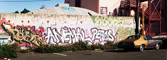 KEEPS|ANEMAL|PEROS|CEAV (knight owls) Tags: graffiti und pi keep af keeps 640 ceaver peros anemal bayareagraffiti ghostowl ceavr knightowls