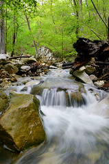 The Flow of Clark Creek, Lost Valley State Park (Jeka World Photography) Tags: water flow us spring rocks slowshutter arkansas ozarks clarkcreek lostvalleystatepark jekaworldphotography jeffrosephotography