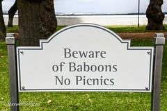Sign at Groot Constantia wine estate