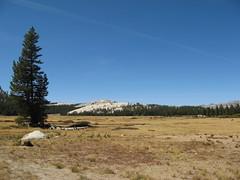 Going to Yosemite (Olivier Bruchez) Tags: california usa us nationalpark unitedstates yosemite northamerica yosemitenationalpark