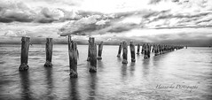 old jettty (liveinmelbourne) Tags: pier long exposure jetty springs clifton