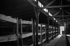 Beds (thoughtbottler) Tags: holocaust auschwitz birkenau concentrationcamp shoah auschwitzbirkenau exterminationcamp thoughtbottler