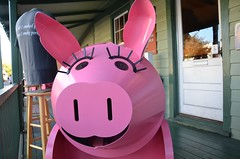 Pig Smoker (Joe Shlabotnik) Tags: pink pig bbq pork barbecue smoker staugustine 2012 november2012