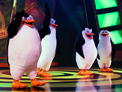The Penguins of Madagascar (meeko_) Tags: show africa vacation gardens private tampa penguin florida live skipper rico entertainment characters operation dreamworks madagascar themepark buschgardens busch kowalski buschgardenstampa stanleyville buschgardensafrica buschgardenstampabay buschgardenscharacters thepenguinsofmadagascar stanleyvilletheater dreamworkscharacters madagascarliveoperationvacation