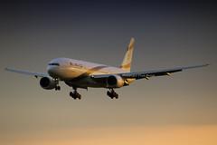 EL AL Boeing777-200 4X-ECC (LHRlocal) Tags: sunset london plane airplane flying airport heathrow aircraft aviation flight jet aeroplane landing boeing 777 spotting lhr heathrowairport elal flugzeuge planespotting boeing777 egll canon6d 4xecc philbroad