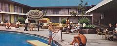 Caravan Lodge Vintage Pool View Phoenix Hotel circa 1950s (hmdavid) Tags: sanfrancisco california phoenix northerncalifornia architecture modern hotel design motel lodge bayarea caravan roadside midcentury jdv