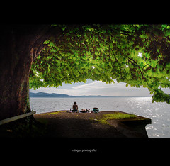 summer (m!ngus photografer) Tags: summer germany deutschland nikon sommer lindau tamron bodensee peacefull lakeconstance 2875 d700 nikond700