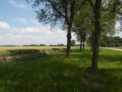 (Jeroen Hillenga) Tags: netherlands groningen oldambt termunten woldendorp baamsum