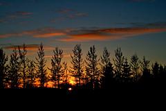 Slsetur (skolavellir12) Tags: autumn sunset red sol island iceland islandia sland rautt selfoss islanda slarlag suurland island roi