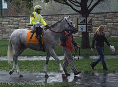 4th, Silver Arch (Martinez, Willie) (K. S. Veitch Photography) Tags: horseracing keeneland