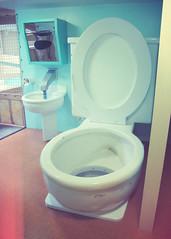 World's Largest Toilet (SOMETHiNG MONUMENTAL) Tags: columbus canon indiana slide toilet roadsideattraction roadsideamerica g11 somethingmonumental mandycrandell worldslargesttoilet