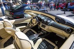 1UV1A9828 (Lamborghini Houston) Tags: festival racecar italia dino 911 360 ferrari spyder turbo porsche enzo gto diablo gt daytona lamborghini rare lemans risi f430 300sl 612 430 512 f40 f12 venom 996 f60 355 599 458 fxx ferrarifestival aventador ferrarihouston lamborghinihouston porscheofnorthhouston indigoautogroup