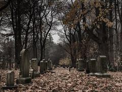 Warwick Historical Cemetery #3 (Michael St. Jean) Tags: leica ri cemetery olympus panasonic rhodeisland 25 mm warwick omd em5