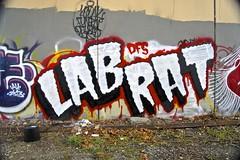 LAB RAT (dim9th) Tags: seattle graffiti dfs labrat