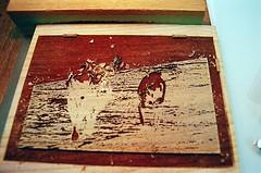 Tweaking the Pthalo Blue Block (jjldickinson) Tags: ocean wood dog beach water print cherry jamie sophie carving longbeach card foam printmaking wrigley olympusom1 woodblock palosverdes palosverdespeninsula ranchopalosverdes fujicolorpro400 mokuhanga laserengraving promastermcautozoommacro2870mmf2842 promasterspectrum772mmuv card2013 roll438o2