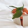 tangerines (idni . idniama) Tags: light stilllife food orange white leaves fruit 50mm nikon tangerines gettyimages mandarinas 2014 foodphotography aliments idni gettyimagesiberiaq3