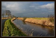 Deutschland / Niedersachsen / Landkreis Friesland / Landschaft am Hookstief (berndwhv) Tags: deutschland landschaften niedersachsen landkreisfriesland hookstief