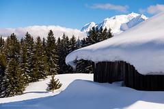 Snow-covered cabin in Combloux (josefrancisco.salgado) Tags: mountain snow france alps pinetree architecture alpes arquitectura cabin flora nikon europa europe nieve nikkor montaa pino montblanc cabaa montebianco d4 combloux rhnealpes 2470mmf28g