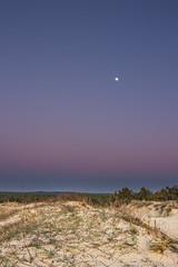 Salie Nord Moon (Nicolas Reggiani) Tags: sky moon france lune landscape dune ciel paysage chemin aquitaine gironde